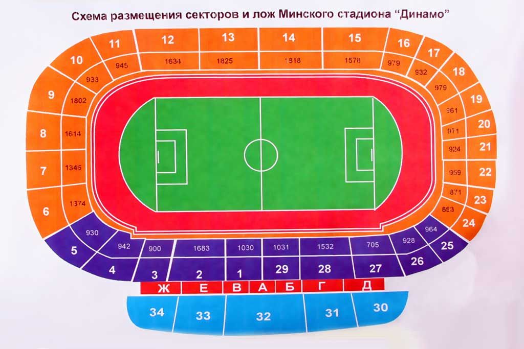 на стадионе Динамо.