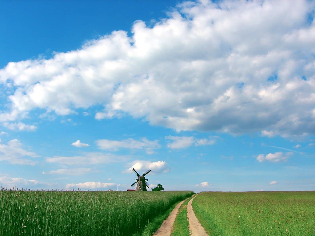 Летний полдень в деревне деревенские